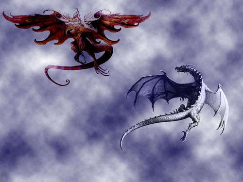 moto and Ice dragoni