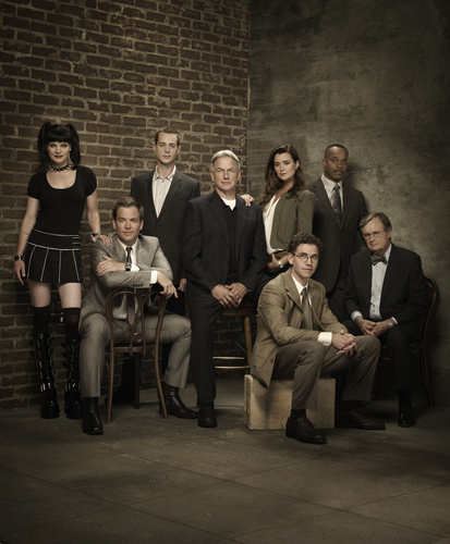 Navy CIS Hintergrund containing a business suit, a concert, and a dress suit called NCIS- Cast Promotional Foto