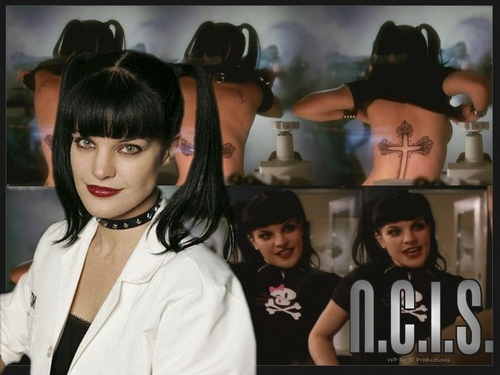 Pauley/Abby - pauley-perrette Photo