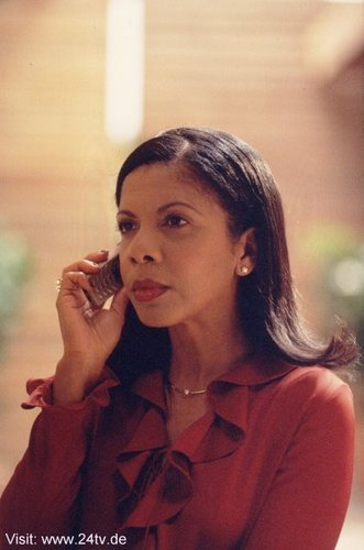Penny Johnson Jerald as jerez Palmer