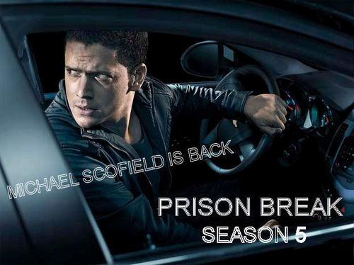 Prison Break - Season 5 - Michael Scofield