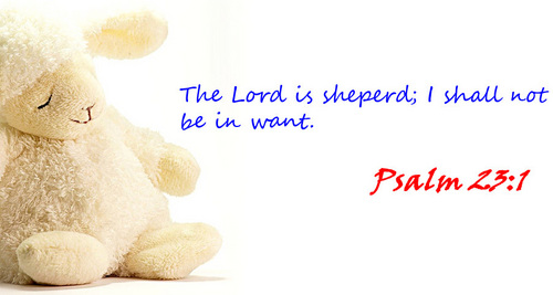 Psalm 23:1 - christianity Photo