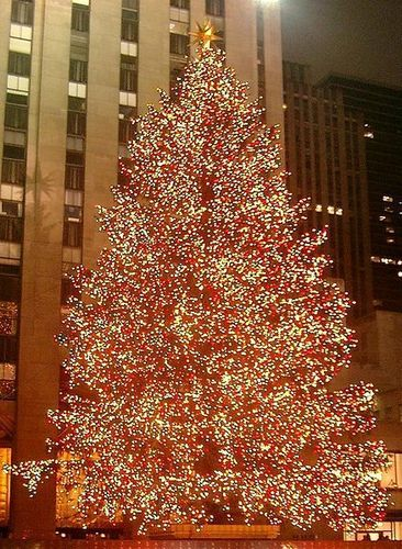 Rockefeller Center Christmas درخت