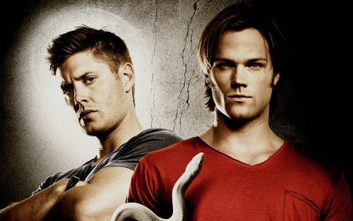 Supernatural wallpaper possibly containing a portrait entitled Sam & Dean