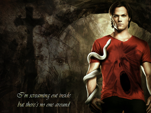 Supernatural wallpaper entitled Sam