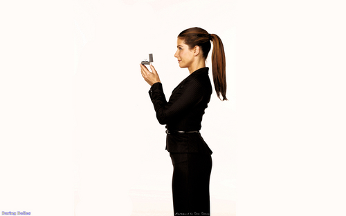 Sandra Bullock wallpaper with a well dressed person titled Sandra Bullock (Proposal) Wallpapers