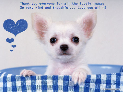 Thank you everyone for all the lovely images .... I love you all <333