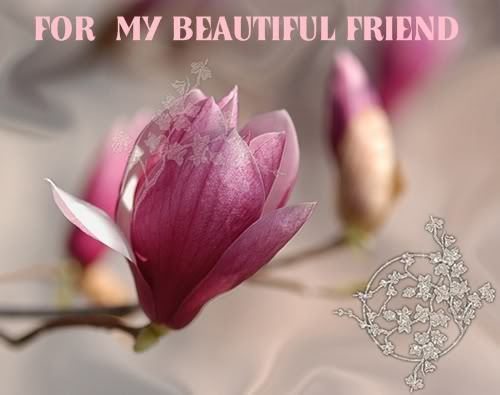 To My Dear Friend Shirin <3
