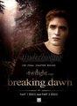 breaking dawn - twilight-series photo