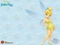 tink - disney-fairies wallpaper