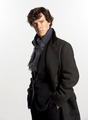 'Sherlock' - sherlock photo