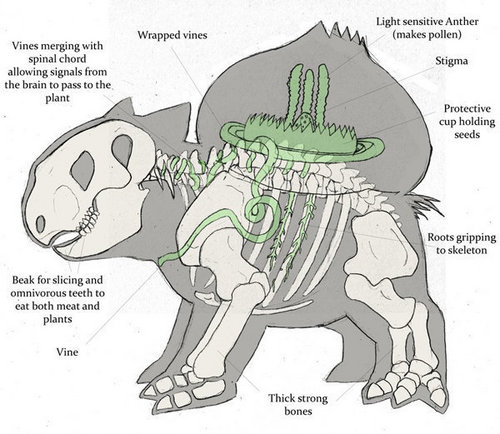 Anatomy of a Bulbasaur
