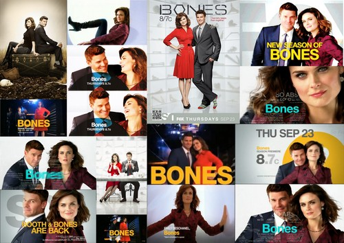 http://images4.fanpop.com/image/photos/16800000/Brennan-Booth-moments-season-6-promo-bones-16862591-500-354.jpg