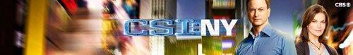 CSI: NY Banner