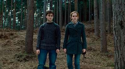 DH still harry and hermione