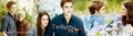 Edward & Bella Eclipse banner - twilight-series photo