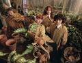 Emma Watson - Photoshoot #006: Vanity Fair (2002)