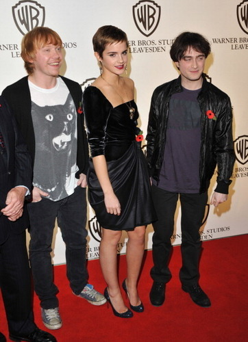 Harry Potter and the Deathly Hallows Part One লন্ডন Photocall