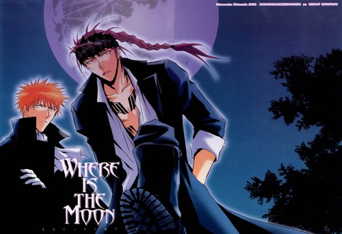 Ichigo and Renji vampiros