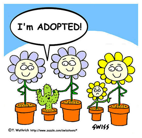Im Adopted