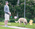 Jon Hamm Walking his Dog - jon-hamm photo