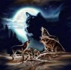 Mystical lobo
