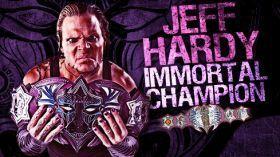 New TNA World Title