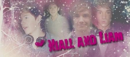 Niall & Liam :) x