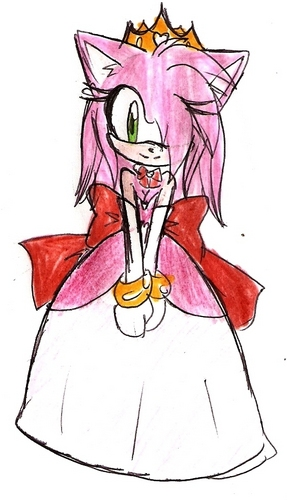 Princess Amy Rose