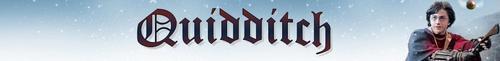 Quidditch Banner