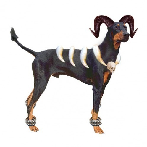 Real Houndoom