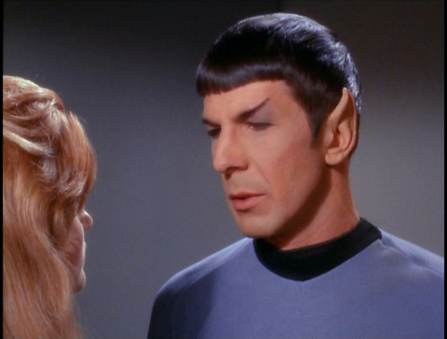 Reflections on Spock - leonard-nimoy Screencap