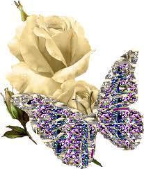 Rose and con bướm, bướm