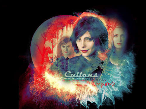 The Cullens वॉलपेपर entitled The Cullen's