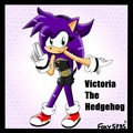 Victoria the hedgehog
