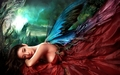 beautiful fairies - fairies photo