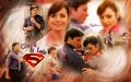 clark kent - tom-welling wallpaper