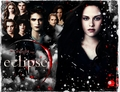 cullens - team-cullen photo