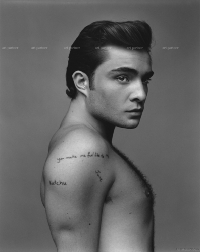 Gossip Girl Hintergrund containing skin called ed westwick photoshots
