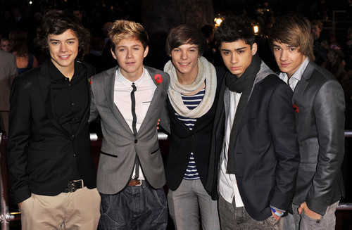 1 Direction 100% Real :) x