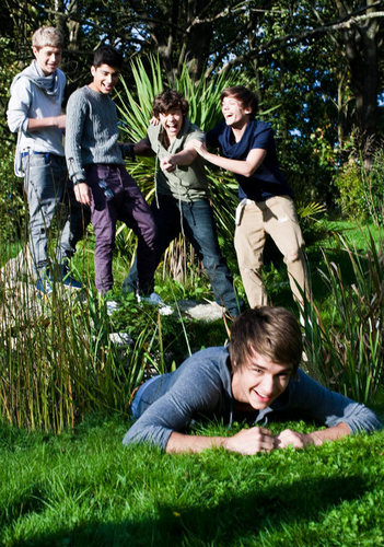 One Direction پیپر وال possibly with a mulch, a mahogany, وردی, and فتاگیس called 1 Direction Photoshoot Rare Pic :) x
