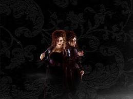 Bellatrix wolpeyper