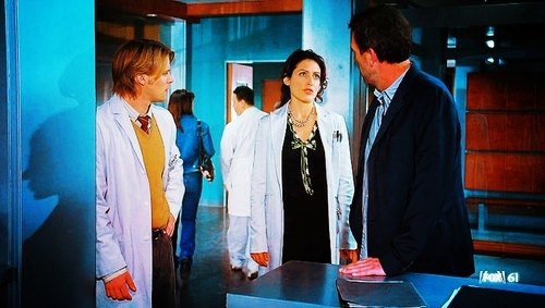 Cuddy caps for every episode- House vs. God - dr-lisa-cuddy Fan Art