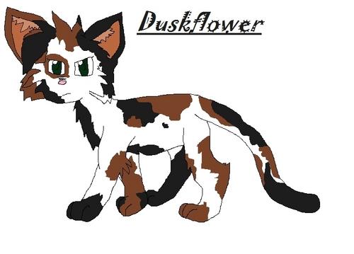 Duskflower