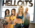 HELLCATS - hellcats wallpaper