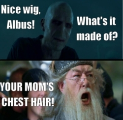 Harry Potter (funny) picscams for Ellen♥ - haleydewit Fan Art