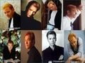 Horatio Caine-David Caruso Wallpaper