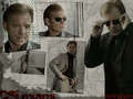 david-caruso - Horatio Caine - David Caruso wallpaper