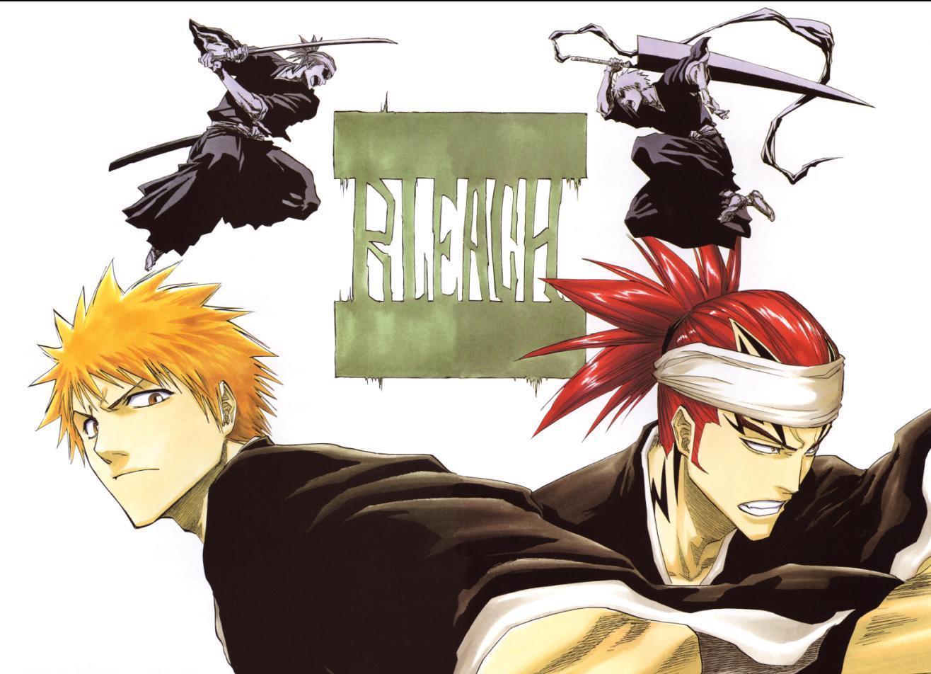 Ichigo and Renji - Bleach Anime Photo (16924127) - Fanpop