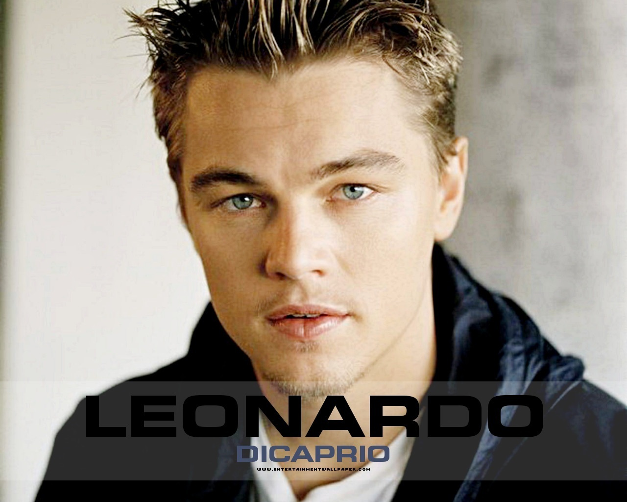 Leonardo Dicaprio - Photo Set